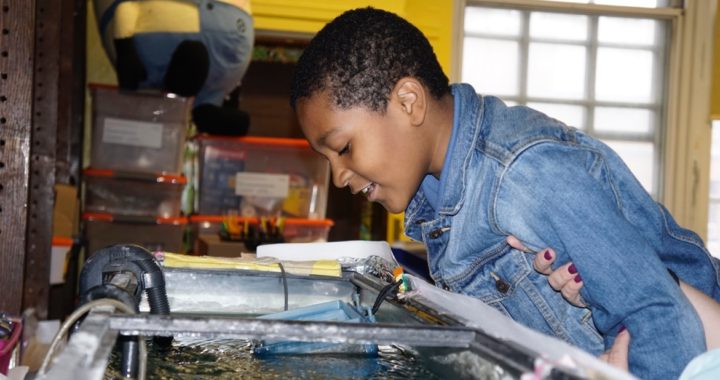 Bronx schools take a unique approach to teaching about water