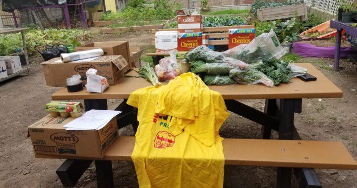 An urban farm brings relief amid the pandemic